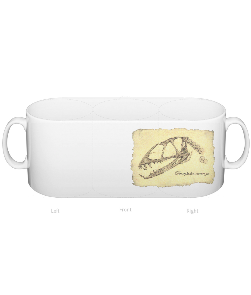 Dimorphodon Skull Mug by Rikey Austin - Alice's Bear Shop