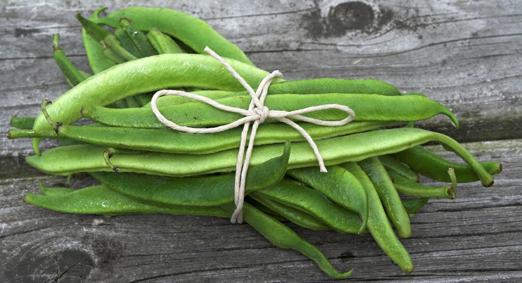 Featured Ingredient: Runner Beans