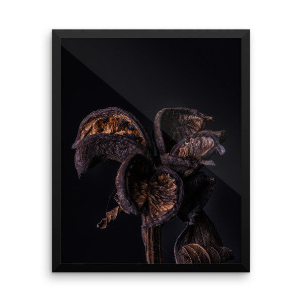 Framed Print - Autumn Is Coming