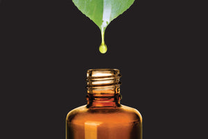 The oils in our skincare products