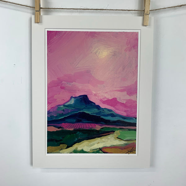 Southwestern landscape with Pink