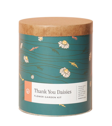 waxed planter grow kit - thank you daisies - Piper & Chloe