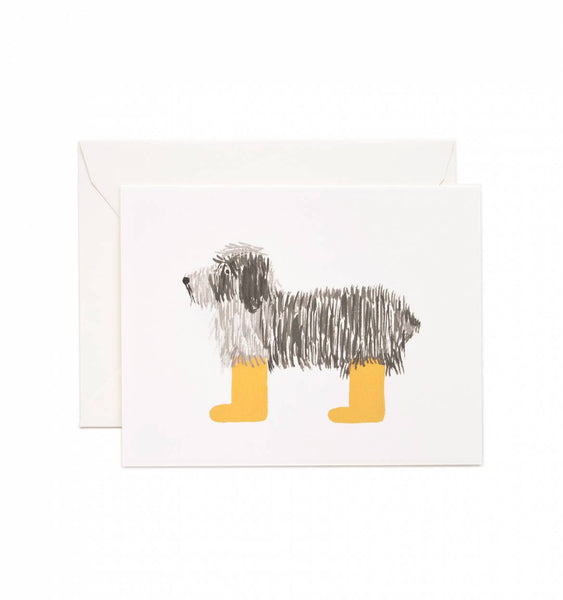 card set in assorted dogs