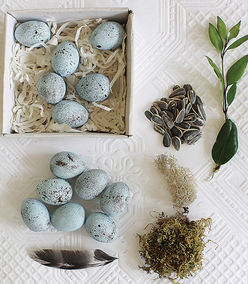 ceramic robins egg decors | Piper & Chloe