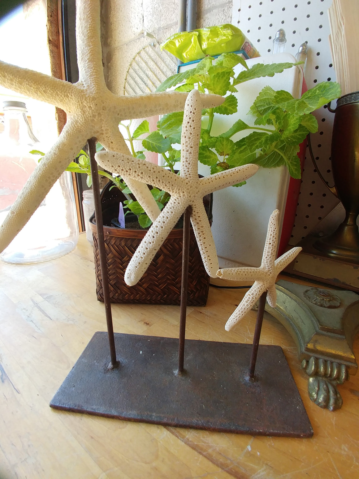 3 starfish on base - VINTAGE JOURNEY MARKET - Upcycling & Restoration