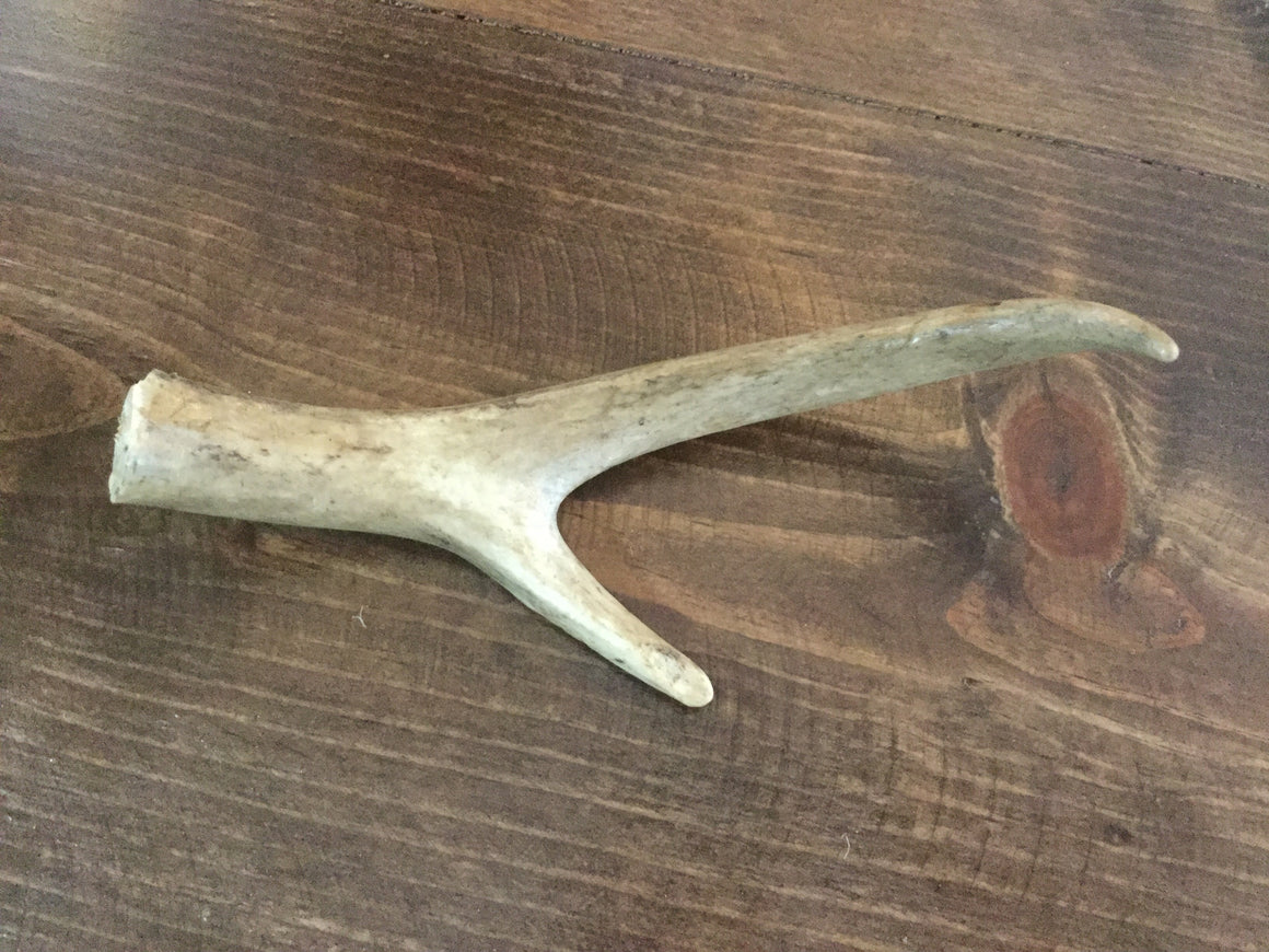 "6"" antler - VINTAGE JOURNEY MARKET - Upcycling & Restoration"