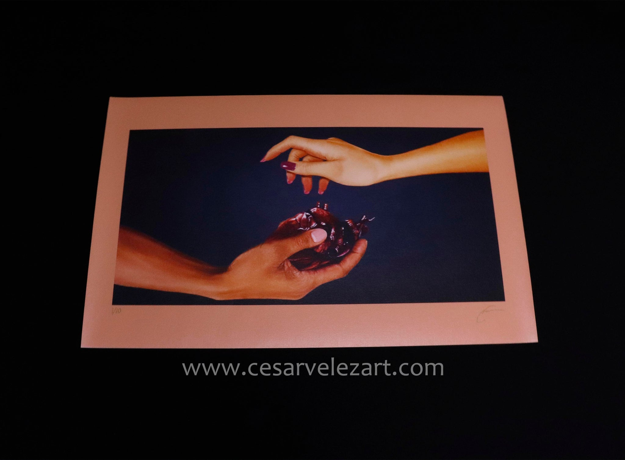 Duality Canvas Print - Limited Edition (Signed/Numbered 1-10) SOLD OUT