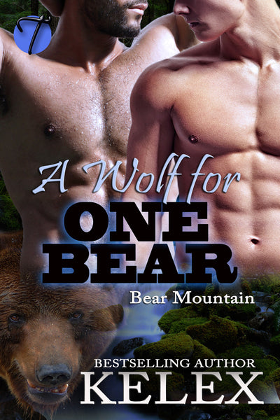 A Wolf for One Bear (Bear Mountain, 15) by Kelex