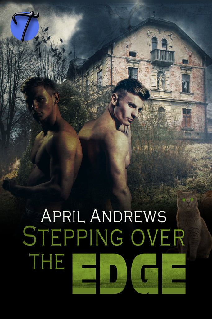Stepping Over the Edge by April Andrews