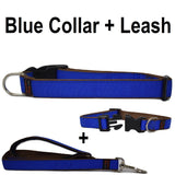 Custom dog Collars Personalized Embroidered dog collars with Name 1 inch Blue with leash