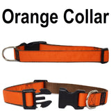 Custom dog Collars Personalized Embroidered dog collars with Name 1 inch Orange