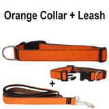 Custom dog Collars Personalized Embroidered dog collars with Name 1 inch Orange with leash