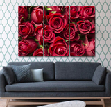 Limited Roses Canvas Wall Art