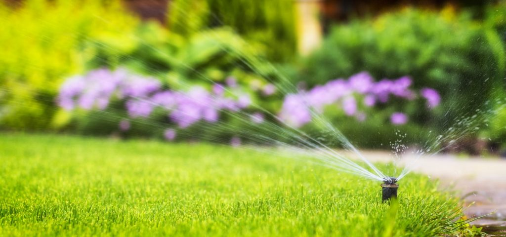 How to Avoid Over-Watering the Lawn