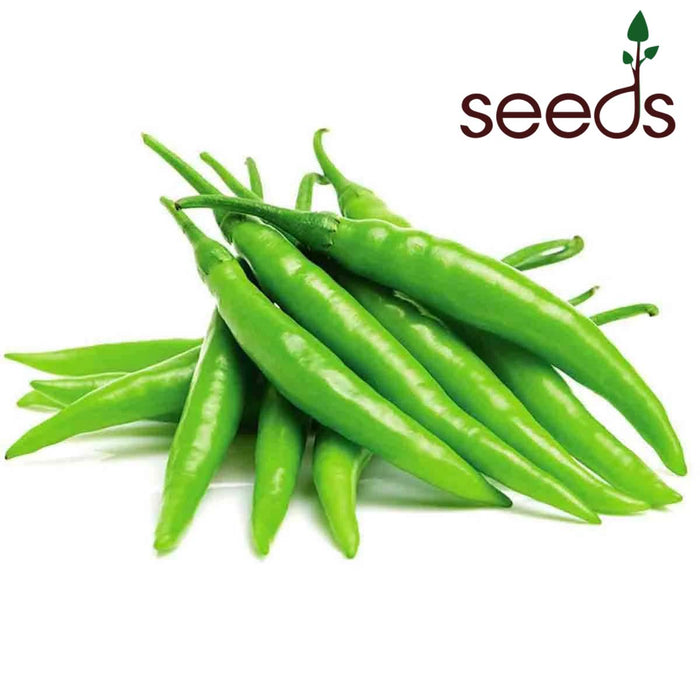 Chilli Hot - 50 Seeds