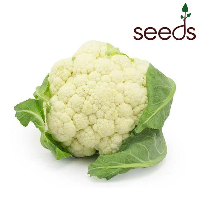 Cauliflower - 100 Seeds