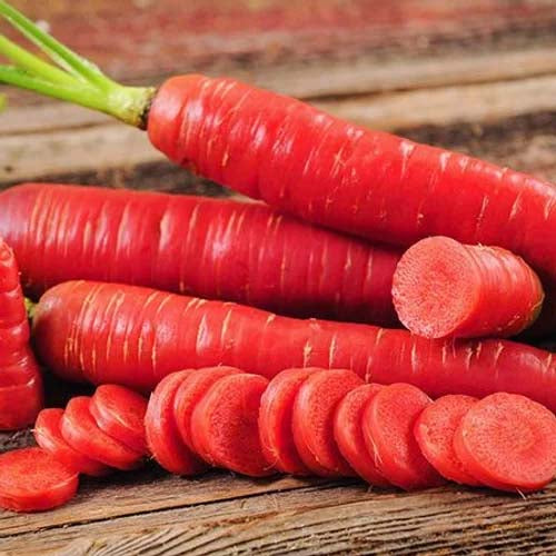 Carrot Red Long - 100 Seeds