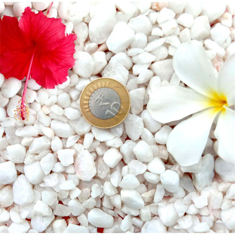 Casa De Amor White Marble Chips Pebbles for Garden, Aquarium, Indoor Outdoor Decoration