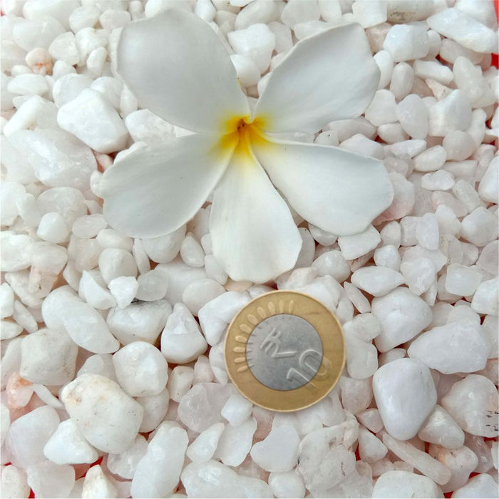 Casa De Amor White Marble Chips for Garden, Aquarium, Indoor Outdoor Decoration