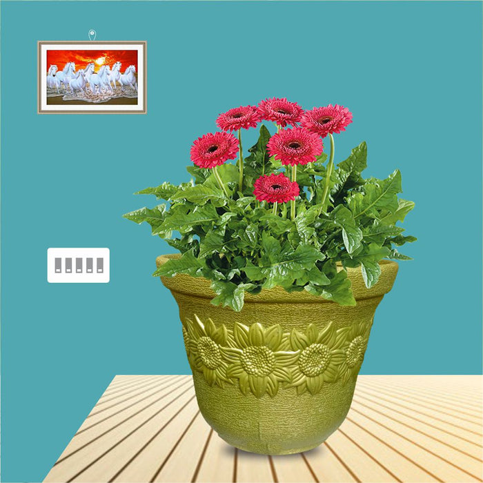 Casa De Amor Garden pots and planters for Gardening and Balcony Decoration (Pack of 1)