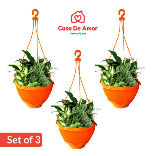 Casa De Amor Hanging Pot Multicolour (Set Of 3)