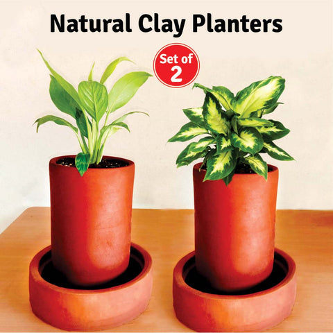 Natural Clay (Terracotta) Planters (Set of 2)