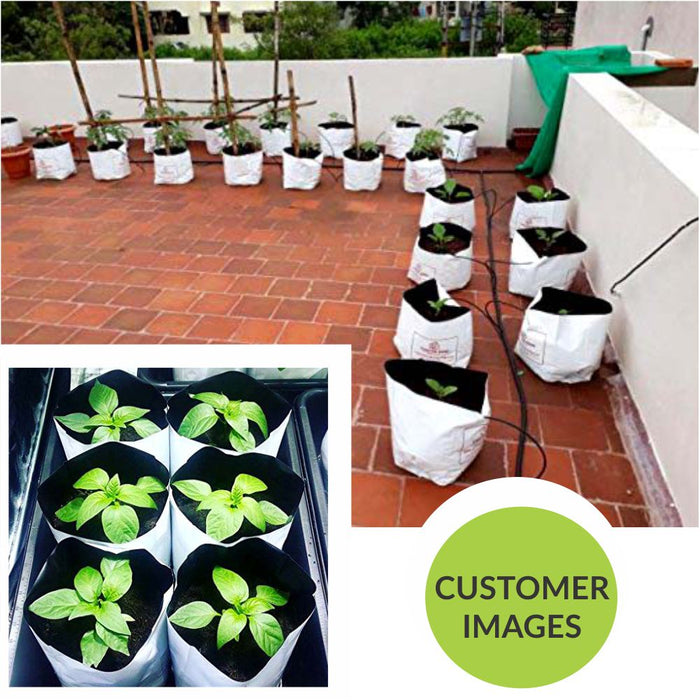 Poly Grow Bags (10), Best for Kitchen Gardens, Terrace Gardens, Balcony Gardens