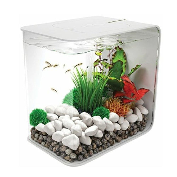 Casa De Amor Decorative Tiny Pebbles White Marbles for Home Decoration, Garden and Fish Aquarium