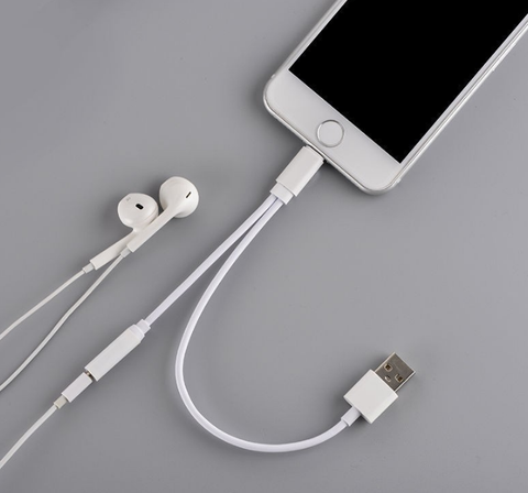 iPhone 7 Dual Cable (Audio & Power)