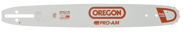 "168PXBK041 - Oregon 16"" Pro-Am Chainsaw Guide Bar"