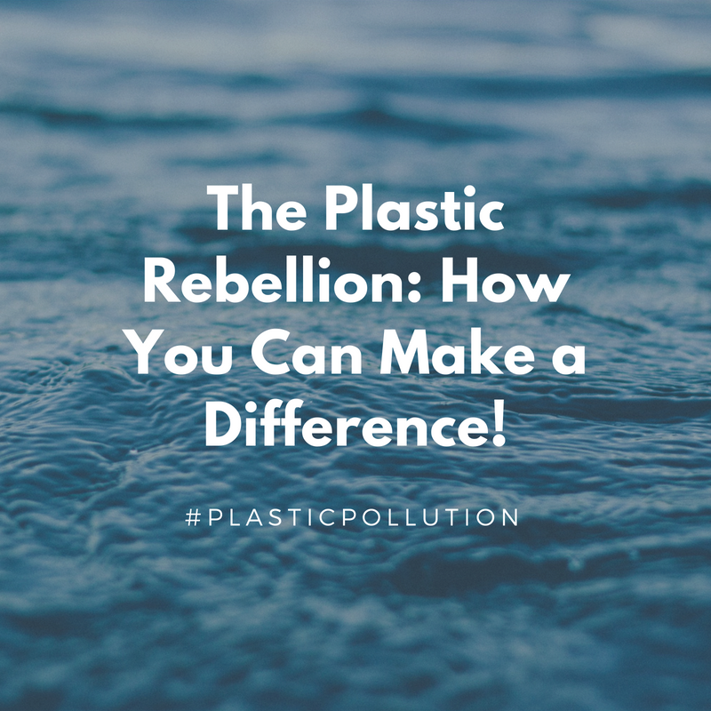 The Plastic Rebellion: How You Can Make a Difference!