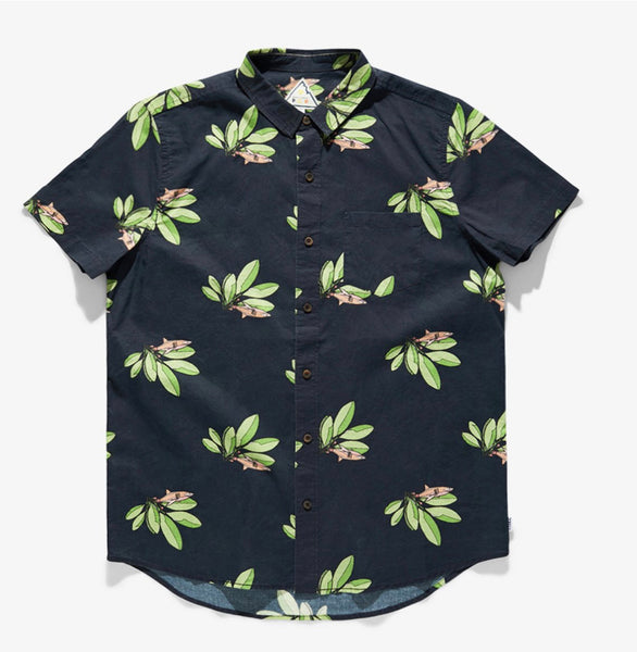 PCP Sharks Buttondown