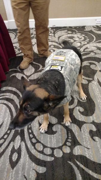 Canine Utility Vest made by Broken Gear for service dogs from personal uniforms