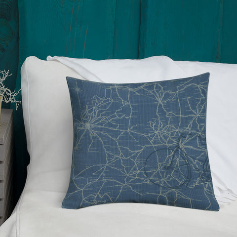 Vintage Kentucky Bicycle Map Premium Pillow