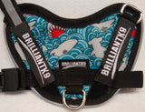 BrilliantK9 Ergonomic Dog Harness August Limited - Shark Attack