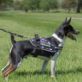 BrilliantK9 Ergonomic Dog Harness Garminn Detection
