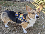 BrilliantK9 Ergonomic Dog Harness Zeke