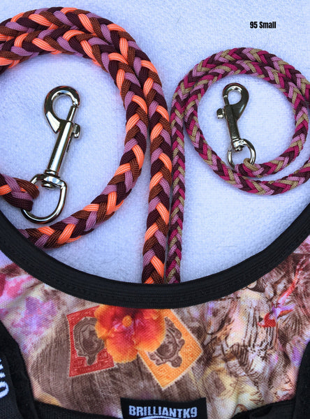 Paracord Leashes