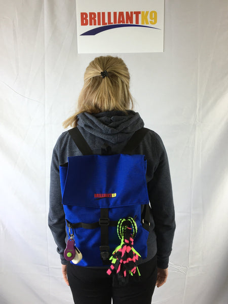 BrilliantK9  Doggone Everything Backpack