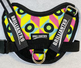 BrilliantK9 Ergonomic Dog Harness March Limited - Totally Neon