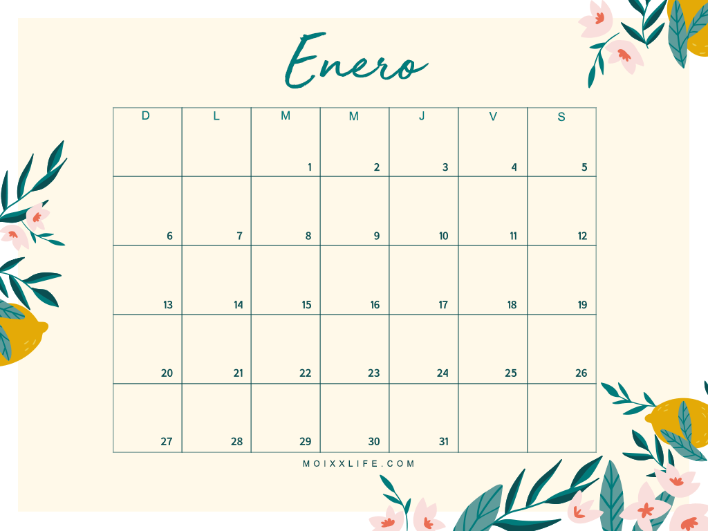 PLANNER Y CALENDARIO ENERO 2019 (DESCARGABLE)