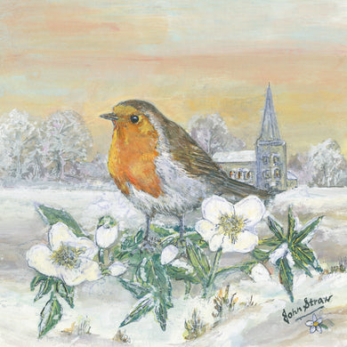 Parkinson's UK Robin and Christmas rose charity Christmas cards