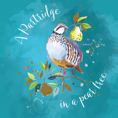 Parkinson's UK Partridge charity Christmas cards