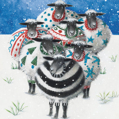 Parkinson's UK Baa baa humbug charity Christmas cards