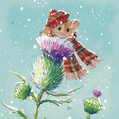 Parkinson's UK Tartan mouse charity Christmas cards with Scottish and Gaelic greeting