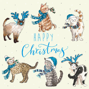 Parkinson's UK Purr-fect Christmas charity Christmas cards