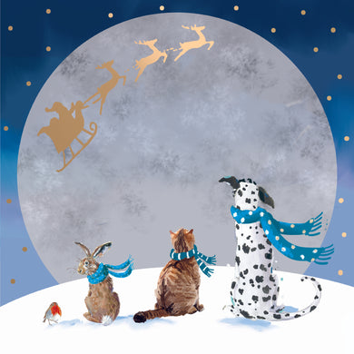 Parkinson's UK Moonlight friends charity Christmas cards