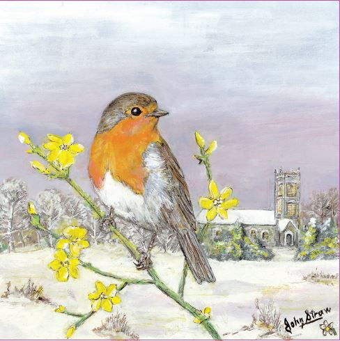 Parkinson's UK Robin and winter primroses charity Christmas cards