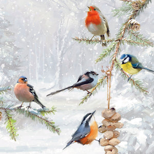 Parkinson's UK Winter feeder charity Christmas cards