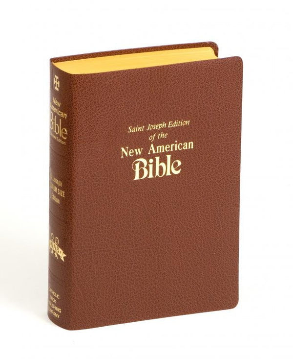 St Joseph New American Bible Deluxe Gift Edition Medium Size